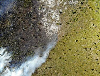 fire-in-mahampy-wetland-madagascar-drone-aerial-photo.jpg